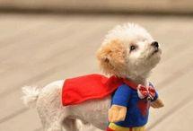 Superheroes, Geeks and Nerds