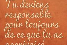 Petit Prince: St. Exupery