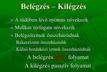 biológa