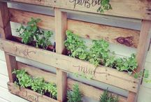 Ideas for garden & outside area