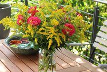 Gartendeko / DIY - schöne Sachen für den Garten