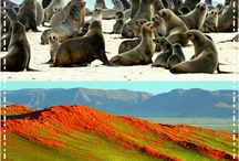 Travel: Namibia