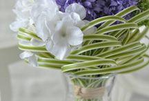 お花、観葉植物