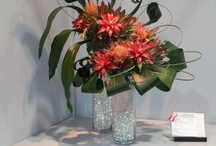 Centerpieces and Floral arrangements / by Amber Waller