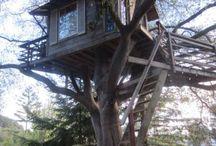 Lomb házak