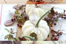 Thanksgiving Season / Get ready for the thanksgiving season with these healthy recipes, diy decorations, tricks to stay healthy around the holidays and so much more!