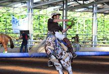 Jeździectwo / Hale i konstrukcje stalowe wykorzystywane w jeździectwie http://www.frisomat.pl/pl/Zastosowania/Je%C5%BAdziectwo.aspx#!