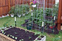 Vychytavky do zahrady.