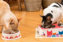 """Bamboo Safe, Chic Pet Bowls from Dylan Kendall / We love nature! We made artist-designed pet bowls from bamboo """"sawdust"""" left over from a chopstick factory! This way we make good use of a throwaway material, we protect the planet and we offer you a safer, not- plastic pet bowl!"""