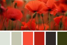 Colours / Colours to try, Colour combinations to remember