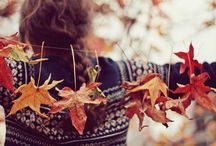 All colors of Autumn