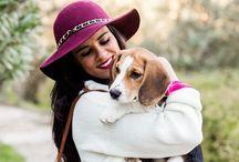 My beagle Juliet