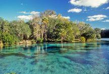 Florida / by Lynn Burch