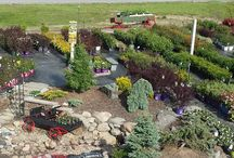 Around the Garden Center / What's happening at Robert's Nursery!
