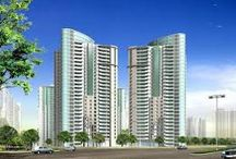 Residential Land In Gurgaon