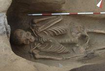 ArcheoNews