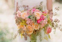 Wedding board / by Nicole Brandner