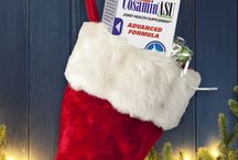 Merry Christmas from Nutramax! / Holiday centerpieces, recipes, gift ideas and more!