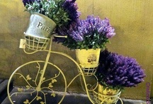 LAVENDER & PURPLE / by Shelly Brown