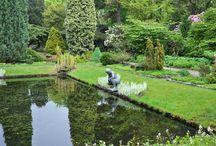 Open Tuinen | Kwekerijen in Nederland en België