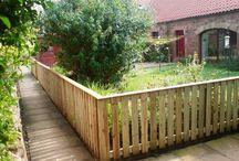 Fenced backyard / by Dawn Lynch