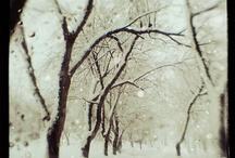 winter#wonderland