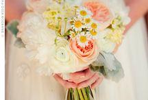 Wedding Plans 5.20.2012!  / by Brittany Caniglia