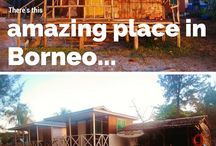 Discover Borneo / Discovering the best of Borneo travel with things to do, places to visit, and more!
