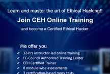 Ethical Hacking / Online Training and Certification  Ethical Hacker  #Ethical #Hacker