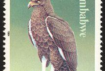 Birds Stamps 2
