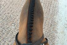 Equestriandreams