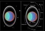 targetFamily/Uranus