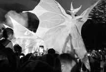 WHITE WINGS / White wings