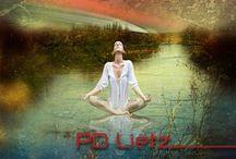 Platinum Collection Pd Lietz