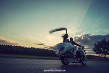 Weddigs photography