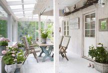 indoor patio / uterum