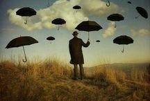 Umbrellas / by mooooooooonica