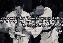 Kyokushin / karate