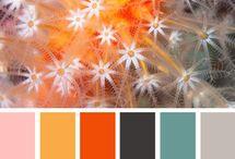 Color palettes / by Fabíola Medeiros