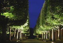 Landscape Lighting / by Maxxima LED Lighting