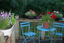 gardening / by Lori Green