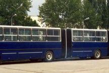 autóbusz / autóbuszok
