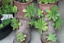Outdoor Planter Ideas / Old Boots Planter
