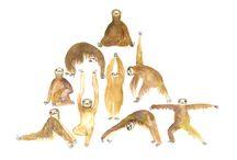 Yoganörd