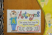 Anchor Charts / Posters