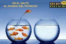 Publicidad Pistacho