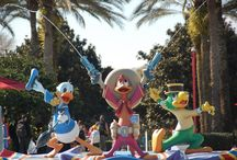 Donald Duck / Celebrating Donald Duck!