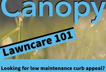 Canopy Lawn Care 101