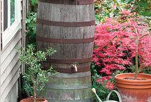 Holler Down My Rain Barrel / by Black Fox Homestead