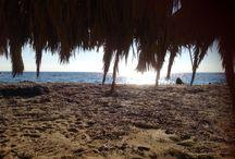 Beach days / The beach ... January through December